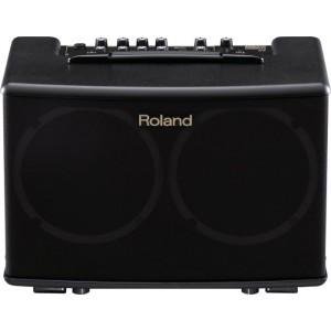 ROLAND AC40