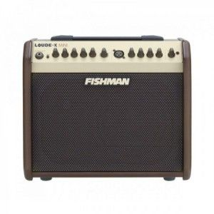 FISHMAN LOUD BOX MINI